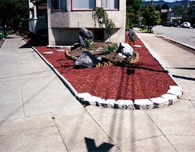 Landscape staging work in San Francisco
