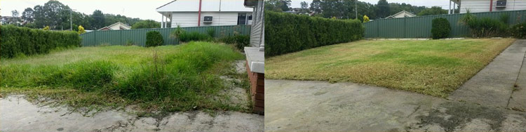 before and after property cleanup